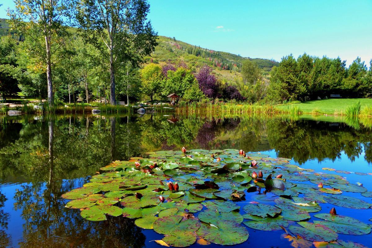 yampa botanical park